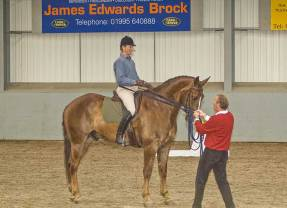 Learning to ride in the classical way – Part 4