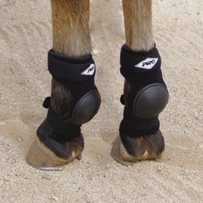 Pro Orthopedic Skid Boot Equine Oasis
