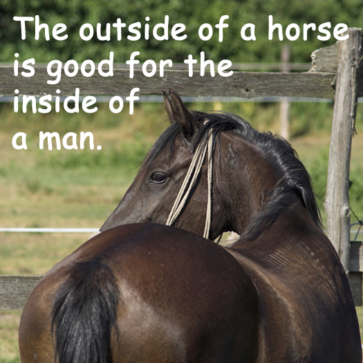Cute Girl Saying Sorry Wallpapers Good Horse Quotes Quotesgram