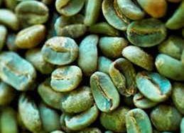 caffe verde 2