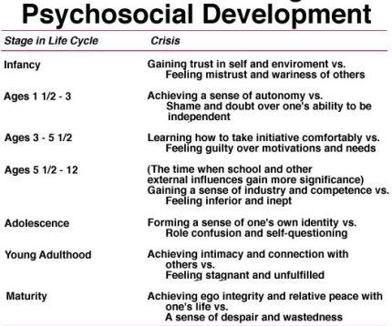 Theories of Developmental Psychology EruptingMind