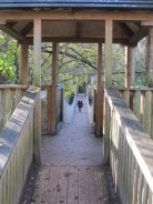 Paignton Zoo - lemur bridge