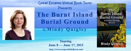 the burndt island  large banner448