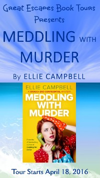 MEDDLING WITH MURDER small banner