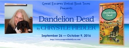 DANDELION DEAD BOOK TOUR large banner448