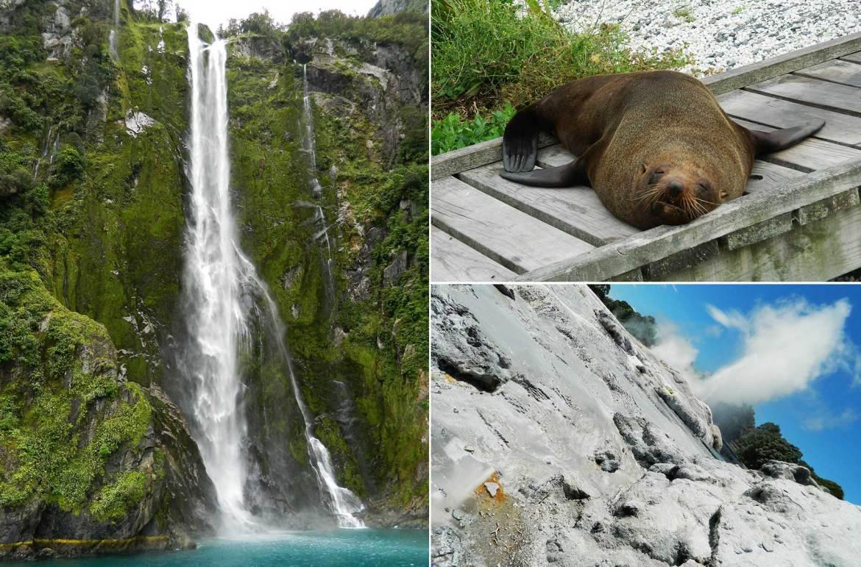 Nova Zelândia: Tudo o que você precisa saber para viajar