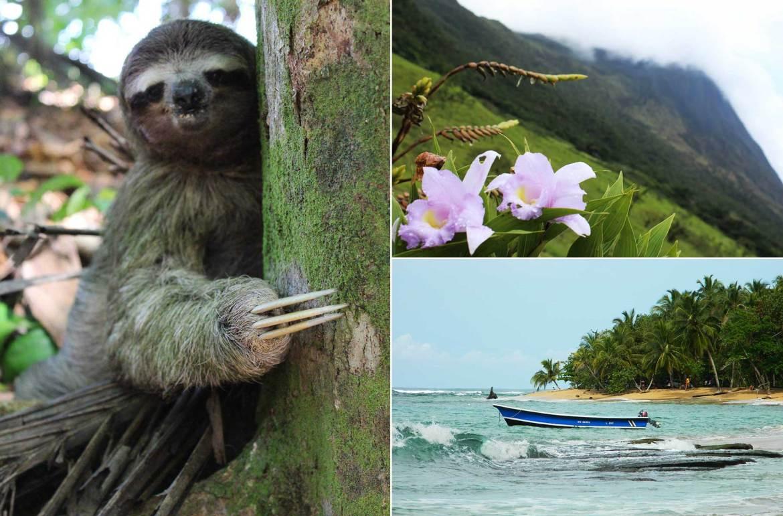 Guia de Viagem Costa Rica: Tudo que você precisa saber antes