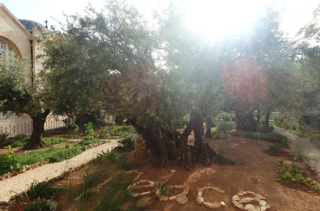 Roteiro em Jerusalém - Igreja de Todas as Nações