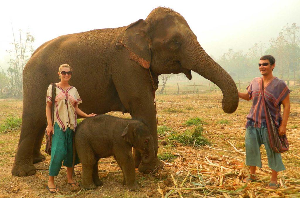 Dicas da Tailândia - Atrações com animais