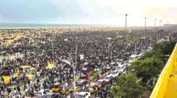 Jallikattu Protest in Marina Beach