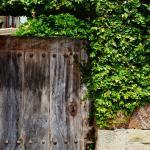 Detalle puerta y cerradura