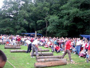 Exhibición corta de troncos