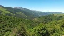 Monte Saja en verano