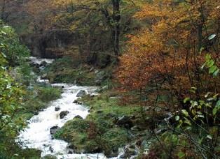 Río Cambillas