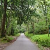 Entrada al Parque Natural. Ucieda
