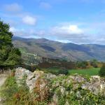 Camino de Saja a Colsa