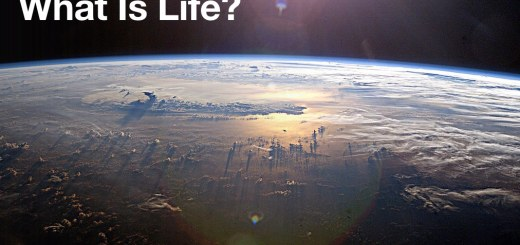 Life on earth 1