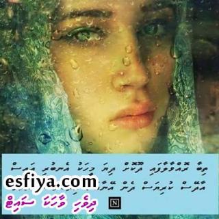 FB_IMG_1461046491991