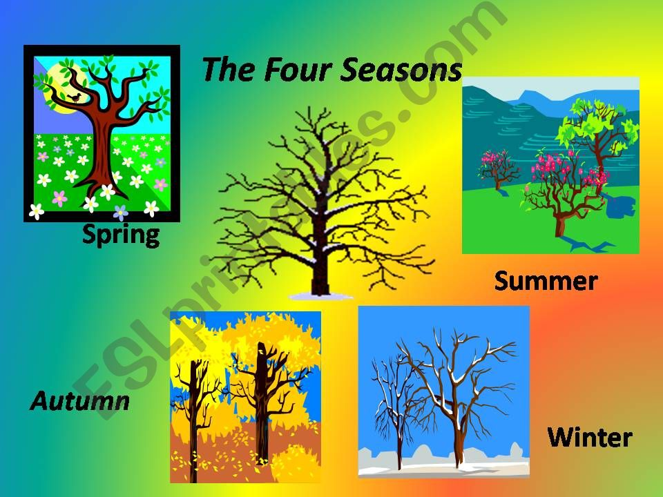 ESL - English PowerPoints SEASONS