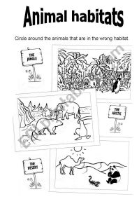 Animal Habitats - ESL worksheet by virginiajimenez