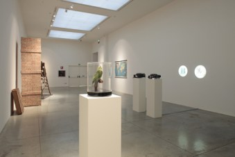 Marcel Broodthaers. L'espace de l'écriture Veduta di allestimento della mostra al MAMbo Foto Matteo Monti 2012