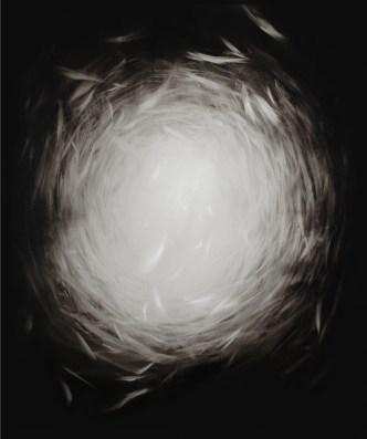Ettore Frani, Radura, 2012, olio su tavola, 120x100 cm. Foto: Paola Feraiorni. Courtesy L'Ariete artecontemporanea