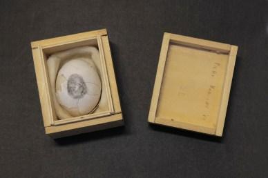 Piero Manzoni, Uovo scultura n.21, 1960, uovo in scatola di legno, 5.7x8.2x6.7 cm, Milano, Fondazione Piero Manzoni in collaborazione con Gagosian Gallery