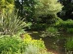 Beth Chatto Gardens (23)