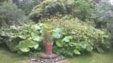 Feeringbury Manor Gardens (12)