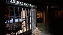 Museum of London Docklands (28)