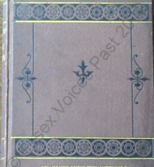 Front cover of W T Scott, Antiquities of an Essex parish or pages from the history of Great Dunmow