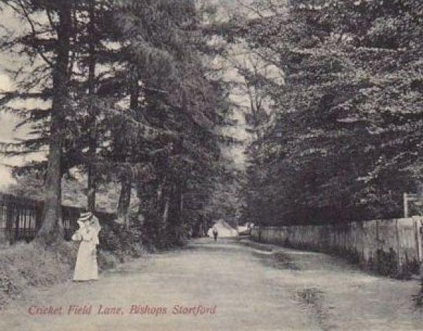 Bishops Stortford - Cricket Field Lane