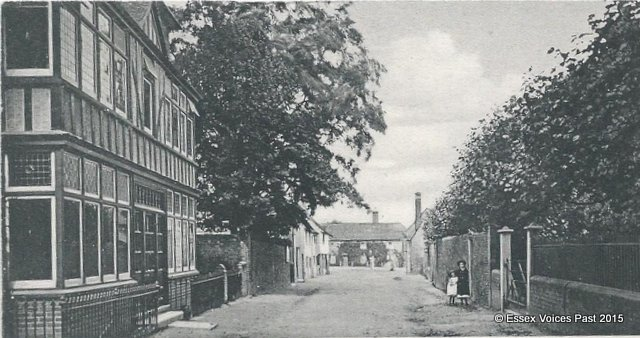 Littlebury in the early 1900s, looking towards Queen's Head Inn