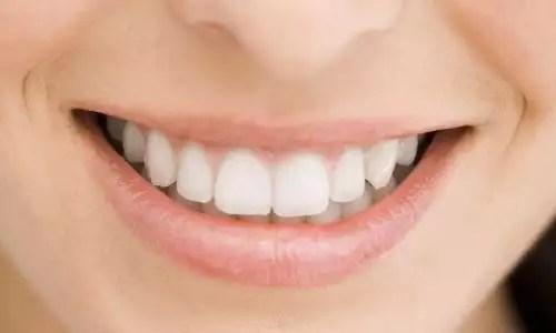 O Dente E Considerado Um Tipo De Osso Estudo Kids