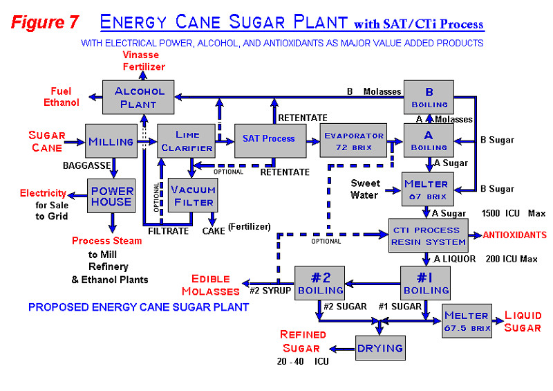 Direct Production of Refined Sugar and Value Added Products from