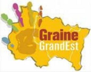 logo Graine Grand Est