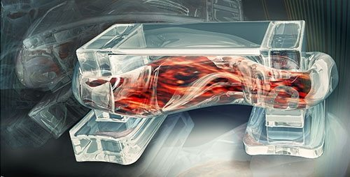 tiny-walking-bio-bots-are-powered-by-muscle-cells-and-controlled-by-an-electric-field