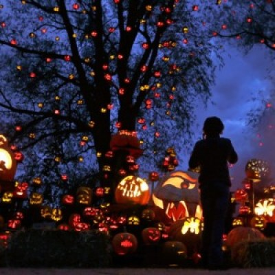 A-girl-stops-to-look-at-hundreds-of-jack-o-lanterns-at-the-Roger-Williams-Park-Zoo-in-Providence-Rhode-Island-on-October-8-2012.-Around-5000-carved-pumpkins-are-on-display-for-this-years-Jack-o-lantern-Spectacular-one-960x577