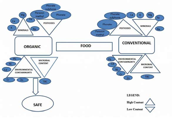 Comparative Analysis of Organic and Conventionally Grown Food from