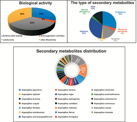 Chemistry and Biology of Secondary Metabolites from Aspergillus