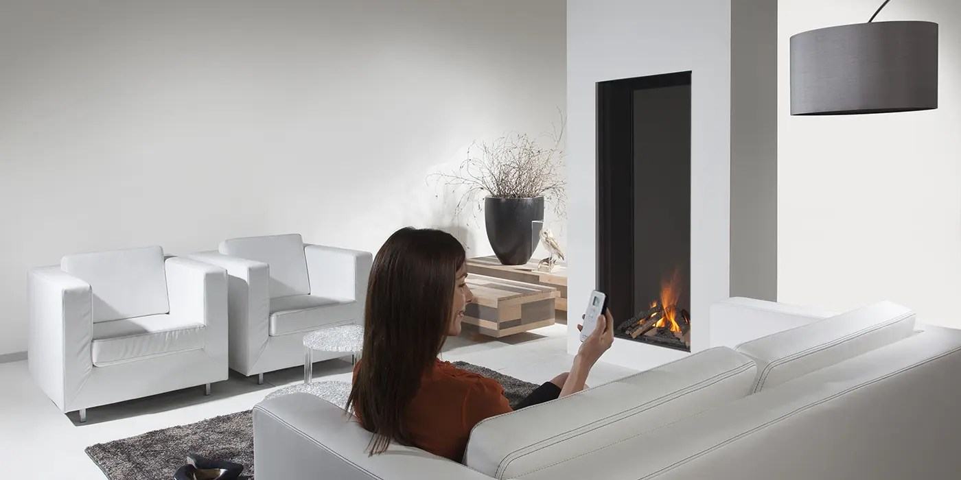 Sky By Element4 Vertical Direct Vent Gas Fireplace