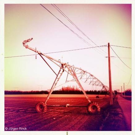 Wasserzeichen_web-IMG_0153