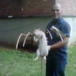 jose rivera & rat