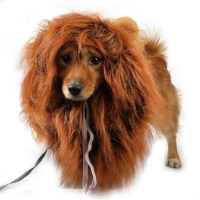 Lion Mane Wig with Ear Costume Cloth Hat Fancy Dress Pet ...