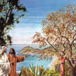 Evangelio San Lucas 13,1-9. Sábado 22 de Octubre de 2016. San Juan Pablo II, Papa.