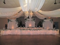 4-Panel 21ft Ceiling Draping Kit (44 Feet Wide) - Event ...