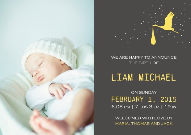Liam  the Stork - Birth Announcements