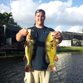 Catching Peacock Bass with Capt. Tony