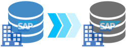 Everuz Database Migration P2P