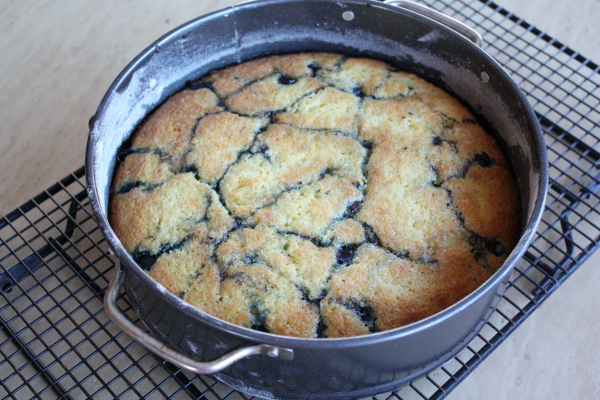 Blueberry Buttermilk Cake